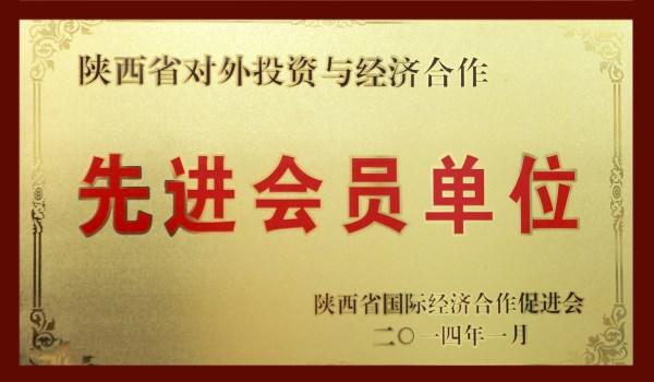 陕西对外投资与经济合作先进会员单位