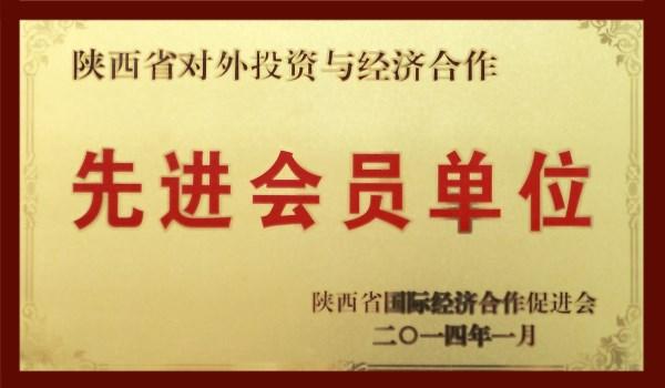 陕西省对外投资与经济合作先进会员单位